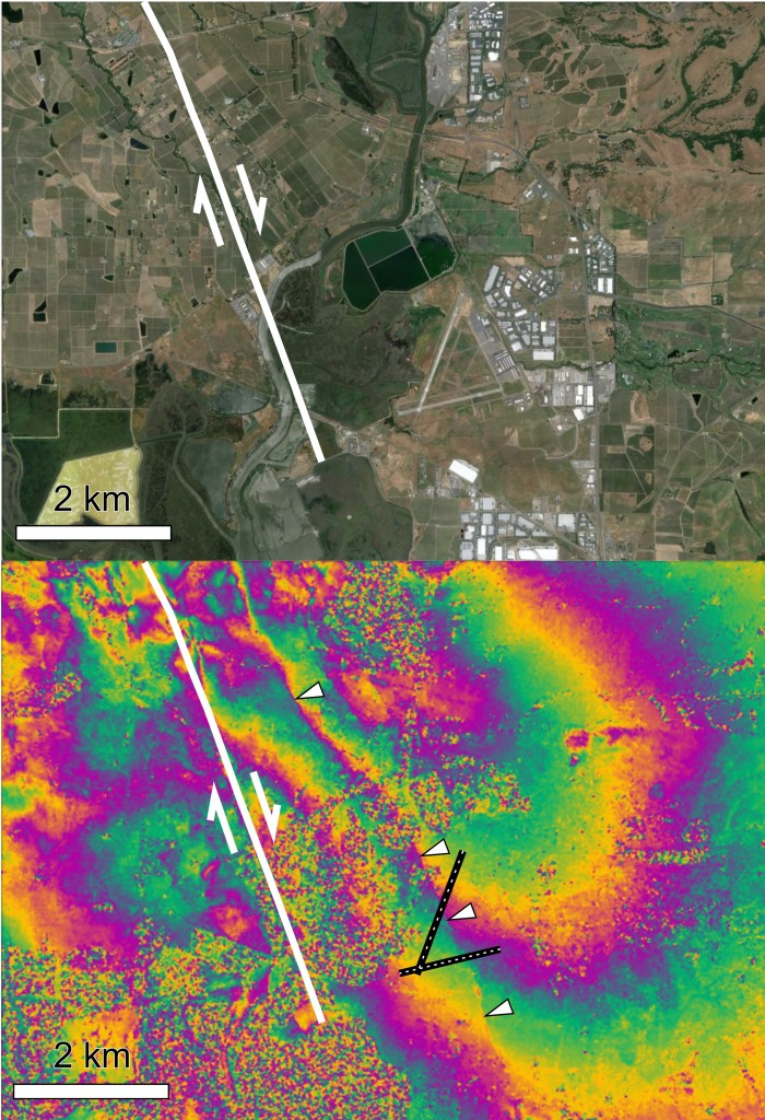 (top) Satellite image of Napa County Airport, five miles south of Napa (GoogleEarth) and the southern extent of the mapped surface rupture (shown in red, UC Davis). (bottom) Sentinel-1A interferogram showing the deformation field around the fault. A small discontinuity running north-south is also visible in the interferogram (marked by white triangles) and is due to minor rupture of a parallel fault strand across the airport runways. Copyright: Copernicus data (2014)/ESA/PPO.labs-Norut–COMET-SEOM Insarap study.