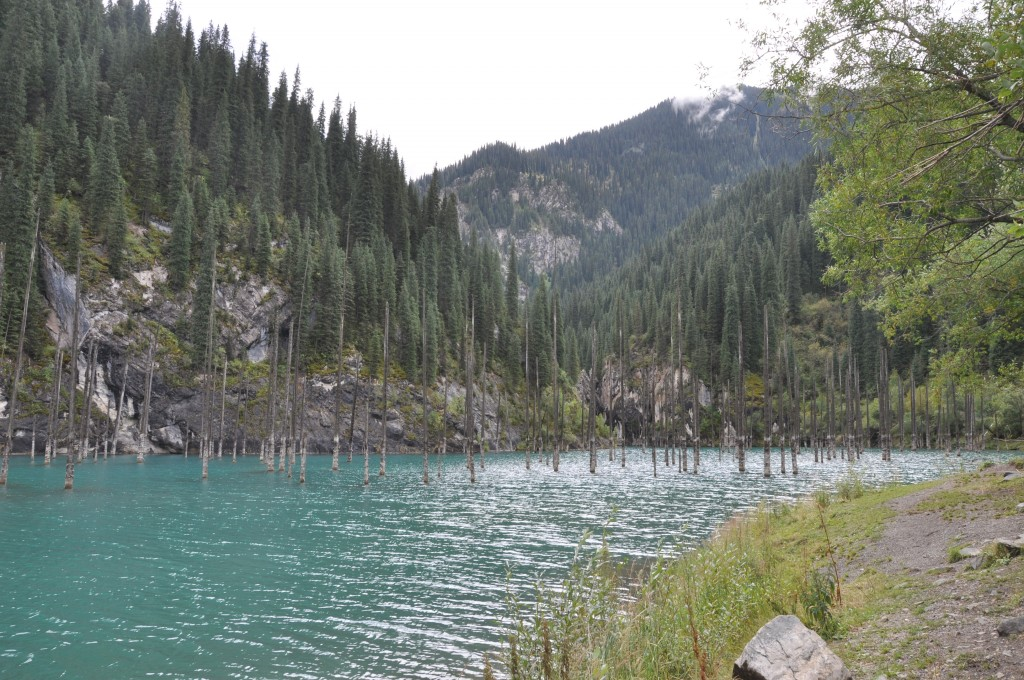 Kaiyndy lake with the drowned forest.